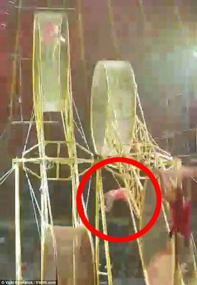 Clip: Đang biểu diễn, diễn viên xiếc gặp nạn rơi từ độ cao hơn 9m xuống sàn - ảnh 1