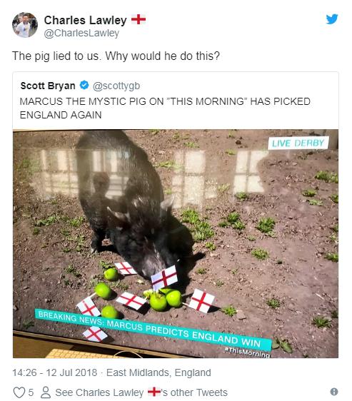 Cộng đồng mạng nước Anh đòi làm thịt siêu lợn tiên tri vì tội đoán sai kết quả trận bán kết World Cup Anh - Croatia - ảnh 1