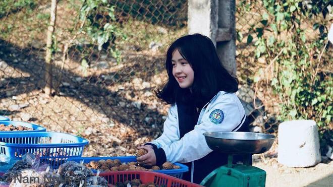 Em gái xinh xắn bán trái cây tại Hà Giang cover Em gái mưa khiến nhiều anh trai thổn thức - Ảnh 3.