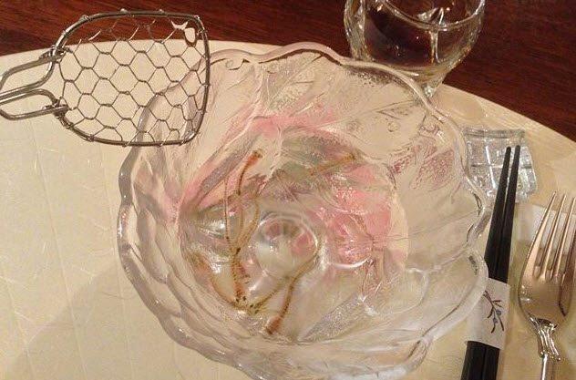 """Rùng mình với những món khoái khẩu cực dị của người Nhật: tinh trùng cá, mực """"zombie"""", kem vị nôn mửa - ảnh 4"""