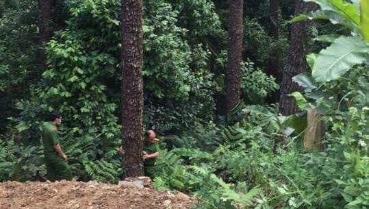 Xe mất phanh khiến đôi nam nữ rơi xuống vực sâu gần 100m ở Tam Đảo, 1 người chết, 1 người nguy kịch - ảnh 1