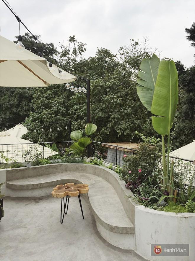 Hà Nội: 3 quán cà phê xanh mướt, mát rượi cực hợp để đi vào những ngày đầu thu - Ảnh 19.