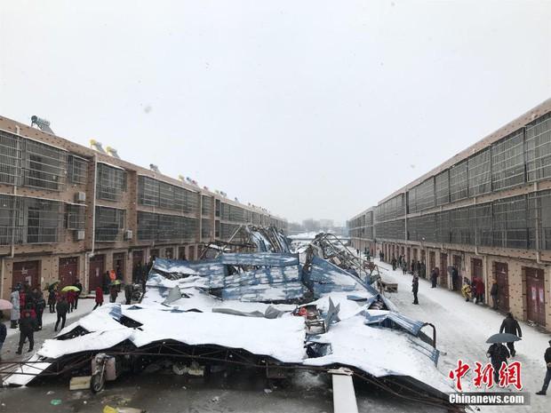 Việt Nam đón giá rét, Trung Quốc cũng gồng mình trước thời tiết lạnh kỷ lục trong lịch sử nước này - Ảnh 9.