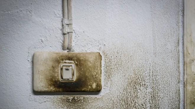 Những thứ trong nhà rất cần được vệ sinh sạch sẽ nhưng nhiều người trong chúng ta lại hay bỏ quên - Ảnh 2.