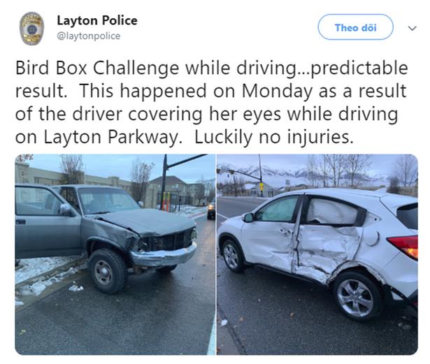 Sở cảnh sát Mỹ ra khuyến cáo người dân không được bịt mắt như trong Bird Box sau tai nạn giao thông - ảnh 1