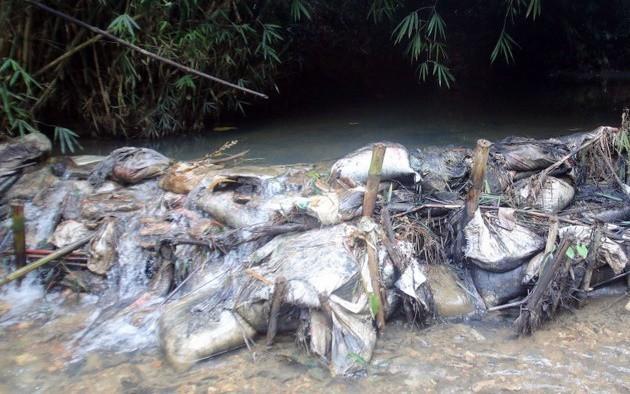 Bắt 2 người đàn ông đổ trộm dầu thải khiến nước sạch sông Đà bị ô nhiễm