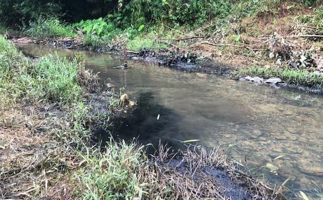 Khởi tố, bắt tạm giam 3 đối tượng đổ trộm dầu thải khiến nước sạch sông Đà ô nhiễm - Ảnh 3.
