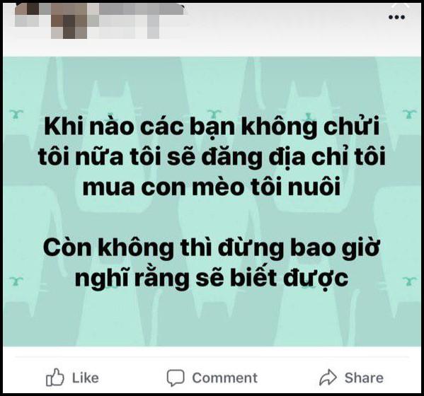 Vụ gái xinh mua mèo bị cà khịa: Xuất hiện tài khoản Facebook giả mạo nam chính 1 cách tinh vi, tiếp tục kích war - ảnh 4