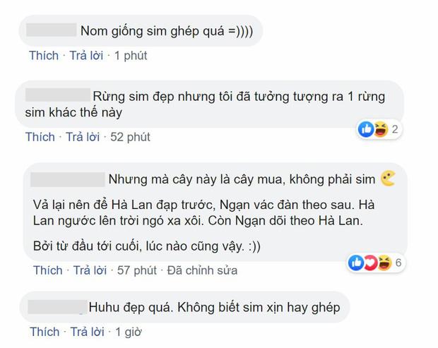 Đại chiến phim Việt mùa cuối năm 2019: Tình học trò Mắt Biếc có làm lại tình thù của Chị Chị Em Em? - Ảnh 8.