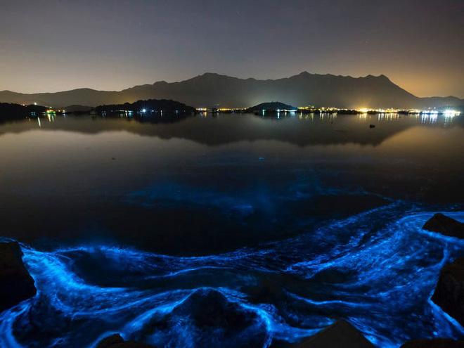 Neom, thành phố Ả Rập tham vọng nhất thế giới : có taxi bay, Mặt Trăng nhân tạo, bãi biển phát sáng, robot khủng long, cô giáo hologram và nhiều hơn nữa - ảnh 13