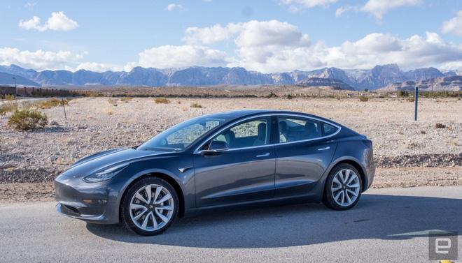 Đại gia đình vịt thoát chết gang tấc dù gặp xe Tesla phóng 100km/h, tất cả nhờ chế độ tự lái phanh gấp quá chuẩn - ảnh 2