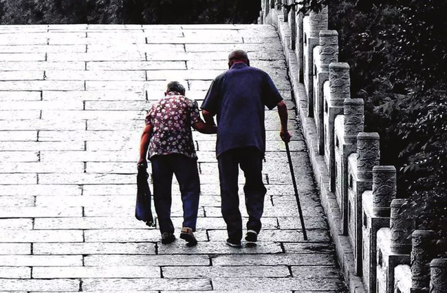Gần 16.000 người Nhật Bản bỗng dưng mất tích mỗi năm và chỉ một số ít quay về, rốt cuộc họ đã đi đâu? - ảnh 1