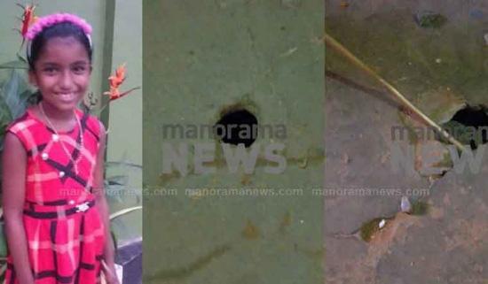 Bé gái 10 tuổi phát hiện trên chân xuất hiện chấm đỏ, nghi ngờ bị rắn cắn nhưng cô giáo không tin, 30 phút sau thì qua đời - ảnh 2