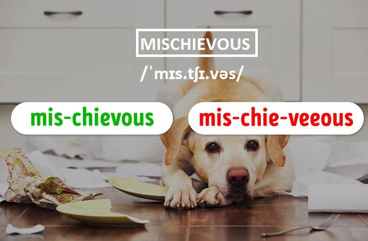"""15 từ tiếng Anh nhiều người tưởng mình phát âm đúng đến khi kiểm tra thì ngỡ ngàng vì như """"1 cú lừa""""! - ảnh 14"""