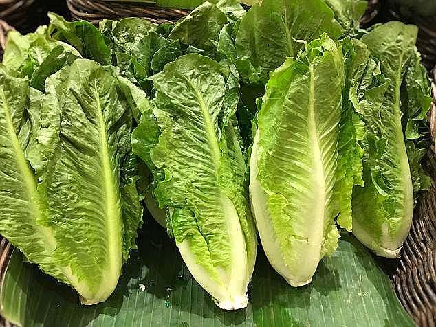 Ăn salad và rau sống, hàng trăm người bị nhiễm khuẩn E. coli - ảnh 1
