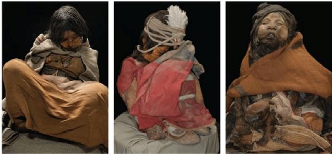 Được chọn hiến tế cho Thần Mặt Trời, 500 năm sau thiếu nữ người Inca trở thành một trong những xác ướp nổi tiếng nhất thế giới - ảnh 2
