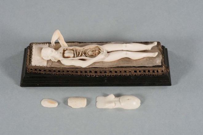 Bí ẩn những con búp bê 300 năm tuổi, được chạm khắc cả nội tạng bên trong - ảnh 1