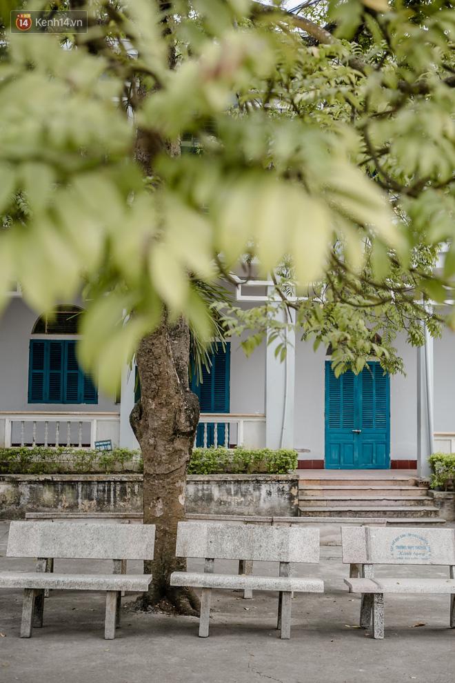Rủ họp lớp không ai đi, cậu bạn một mình về thăm trường cũ, chụp được bộ ảnh về trường đẹp như phim Hàn - Ảnh 8.