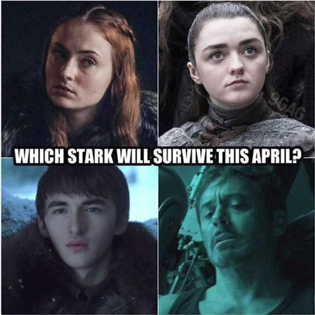 Từ Endgame sang Game of Thrones - Thành viên nhà Stark nào sẽ sống sót qua được tháng 4 đây? - ảnh 1