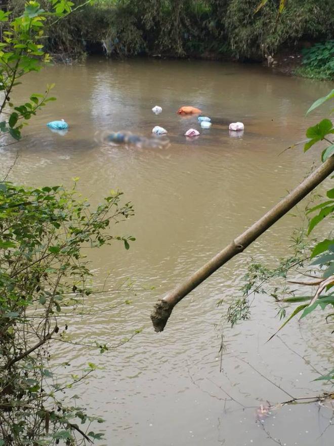 Lạng Sơn: Bàng hoàng phát hiện thi thể nữ giới đang phân hủy dưới suối - Ảnh 1.