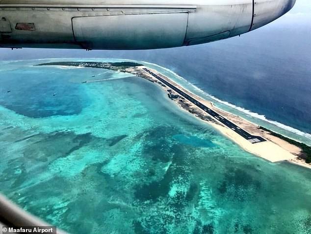Xót xa cảnh tượng rùa hiếm Maldives lặn lội về quê đẻ trứng, nào ngờ tổ đã biến thành đường băng sân bay - ảnh 2