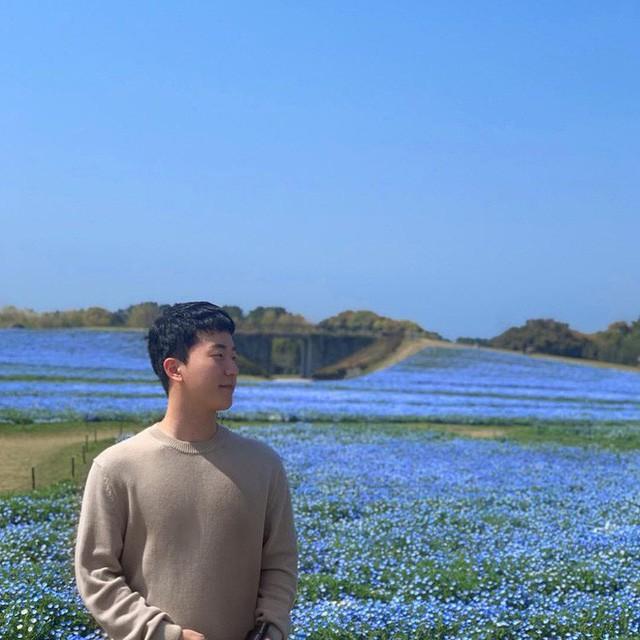 Thiên đường hoa gây sốt Nhật Bản: Hàng cây anh đào kết hợp rừng hoa mắt xanh đẹp như một giấc mơ - Ảnh 8.
