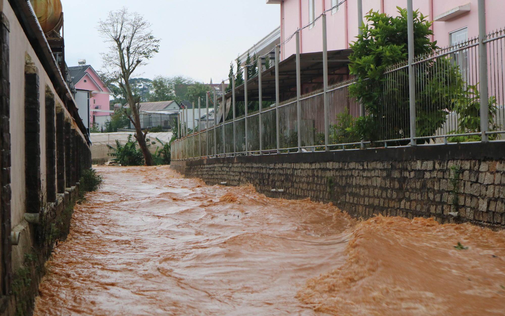 Đà Lạt mưa lớn kéo dài, nhiều nơi ngập nặng, người dân cuống cuồng lội nước
