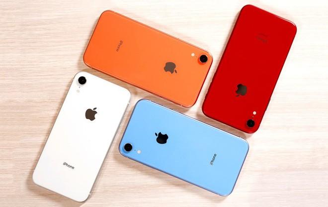 Chẳng còn lo yếu sinh lý: iPhone XR 2019 sẽ có thời lượng pin trâu hơn thế hệ trước - ảnh 2