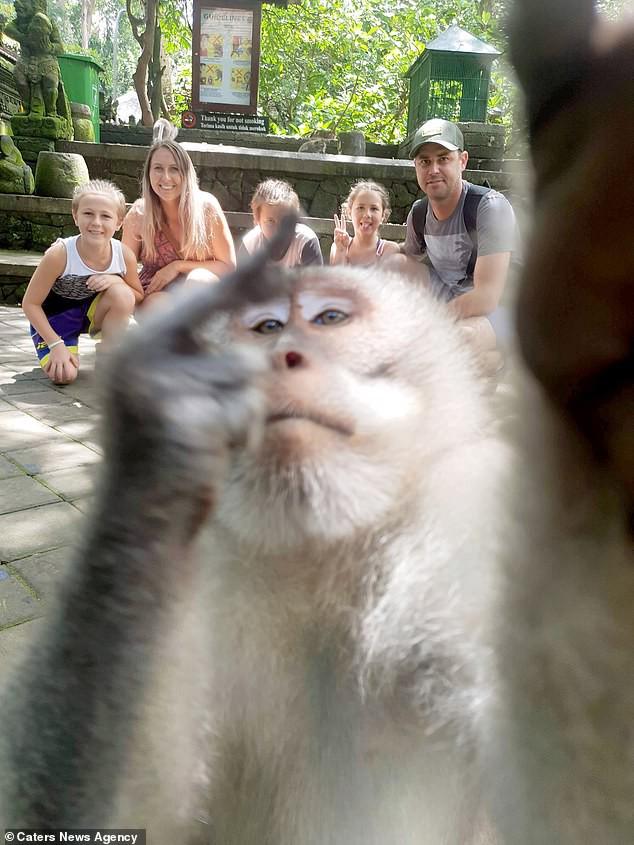 Khỉ con bày tỏ lòng hiếu khách bằng cách giơ ngón tay thối vào ống kính giữa lúc cả gia đình đang chụp ảnh du lịch - Ảnh 3.