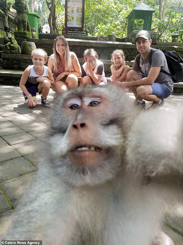 Khỉ con bày tỏ lòng hiếu khách bằng cách giơ ngón tay thối vào ống kính giữa lúc cả gia đình đang chụp ảnh du lịch - Ảnh 2.