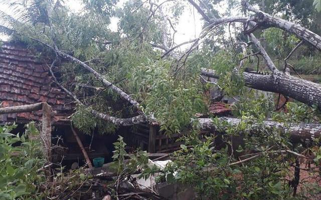 Nghệ An: Lốc xoáy khiến hàng chục nhà dân bị tốc mái, nhiều cột điện gãy đổ