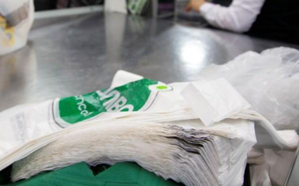 Panama: Quốc gia Trung Mỹ đầu tiên cấm túi nylon sử dụng 1 lần - ảnh 1