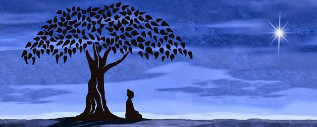 10 thói quen đem tới trí tuệ cho cuộc sống, làm được đến điều cuối cùng thì cuộc đời nở hoa - ảnh 1