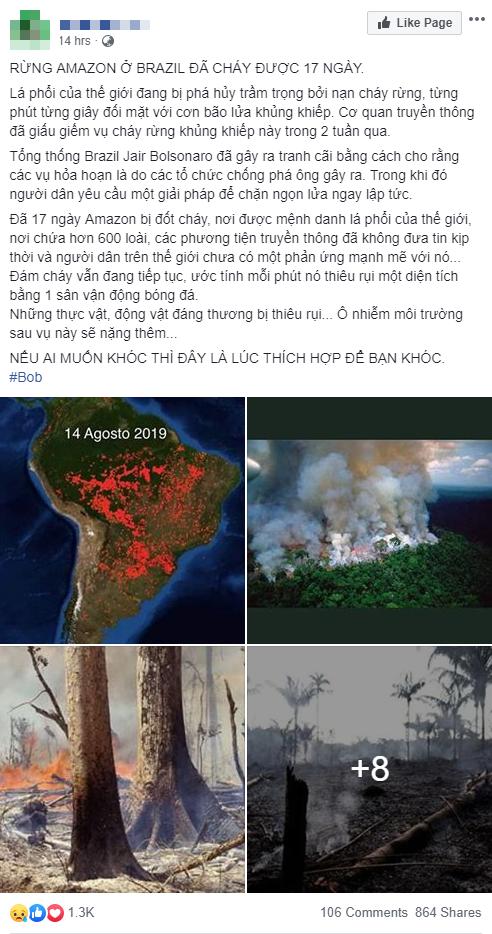 Thảm họa Amazon không còn là chuyện ở xa: Cư dân mạng thế giới và Việt Nam đồng loạt lên tiếng kêu gọi cứu lấy cánh rừng xanh - ảnh 7