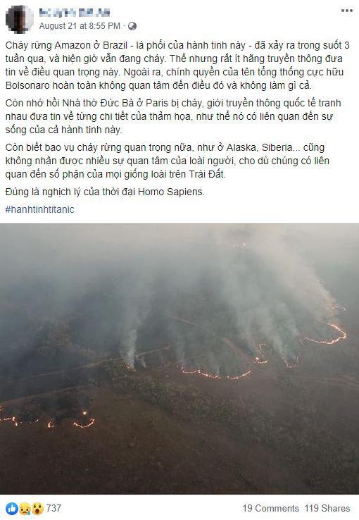 Thảm họa Amazon không còn là chuyện ở xa: Cư dân mạng thế giới và Việt Nam đồng loạt lên tiếng kêu gọi cứu lấy cánh rừng xanh - ảnh 8