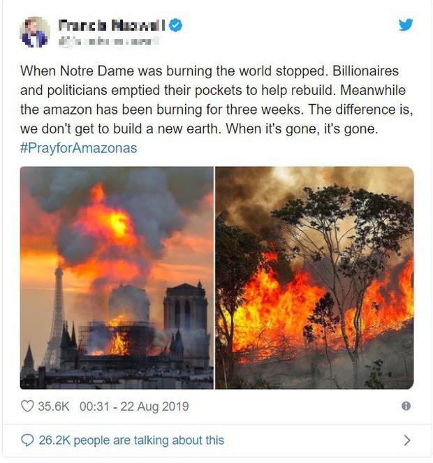 Thảm họa Amazon không còn là chuyện ở xa: Cư dân mạng thế giới và Việt Nam đồng loạt lên tiếng kêu gọi cứu lấy cánh rừng xanh - ảnh 4