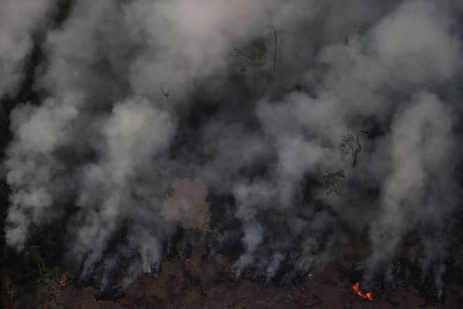 NASA tiếp tục công bố hình ảnh gây sốc về hậu họa của cháy rừng Amazon: Vấn đề đã vượt tầm châu lục! - ảnh 3