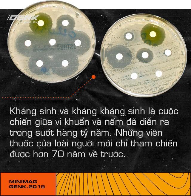 Trong cuộc chiến của vi khuẩn, con người chỉ là một thường dân nhỏ bé không may chết vì đạn lạc - ảnh 10