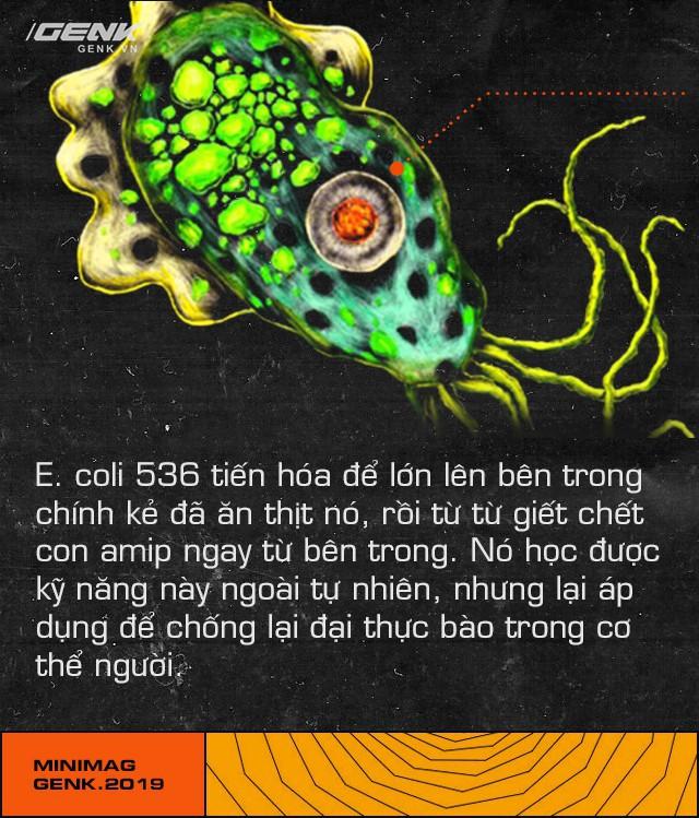 Trong cuộc chiến của vi khuẩn, con người chỉ là một thường dân nhỏ bé không may chết vì đạn lạc - ảnh 13