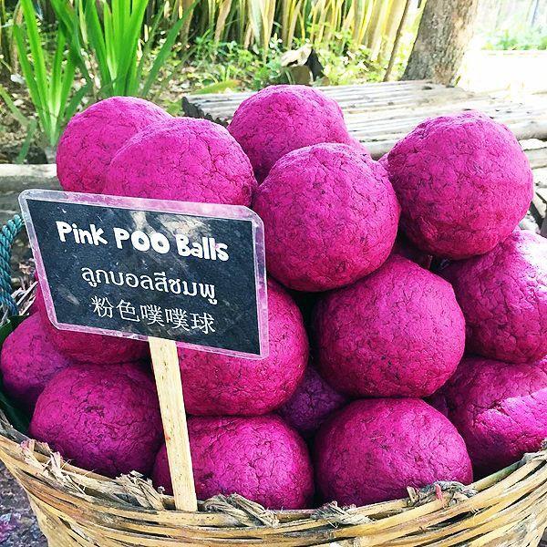 """Du lịch Thái Lan và 20 điều khiến du khách """"té ngửa"""": Chợ giữa đường ray là bình thường, chuối khổng lồ cũng không phải chuyện lạ! - ảnh 4"""
