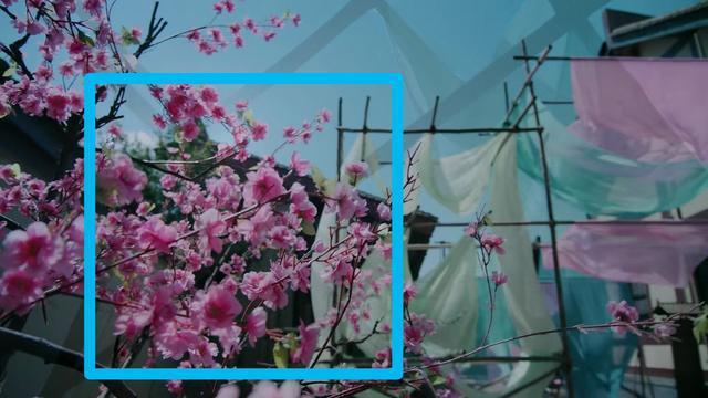 Giờ đã là năm 2020 nhưng fan Trần Tình Lệnh vẫn miệt mài soi ra ý nghĩa của 4 loại hoa từng xuất hiện trong phim - ảnh 5