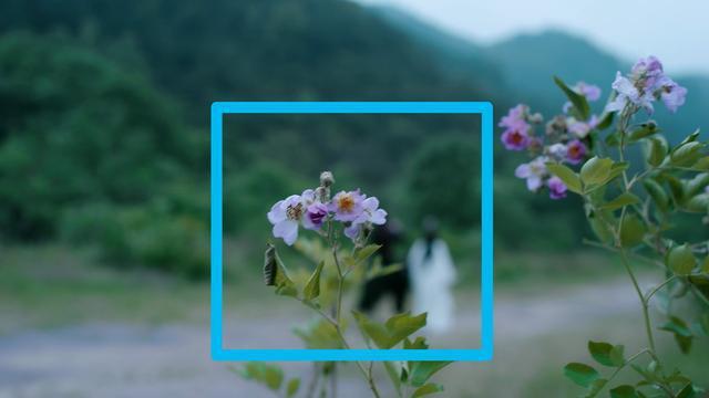 Giờ đã là năm 2020 nhưng fan Trần Tình Lệnh vẫn miệt mài soi ra ý nghĩa của 4 loại hoa từng xuất hiện trong phim - ảnh 6