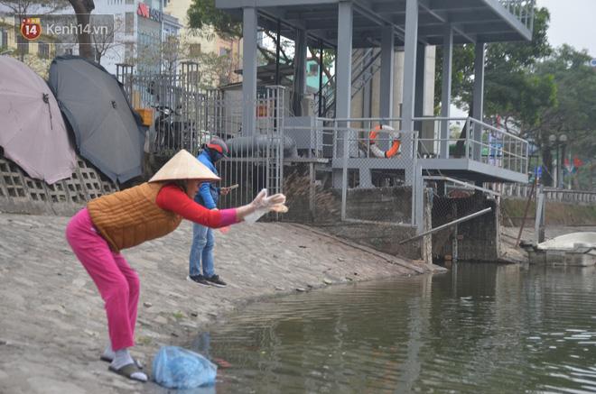 Hà Nội: Cá chép vàng chết nổi khi vừa được thả xuống hồ Hoàng Cầu ngày ông Công ông Táo - ảnh 3