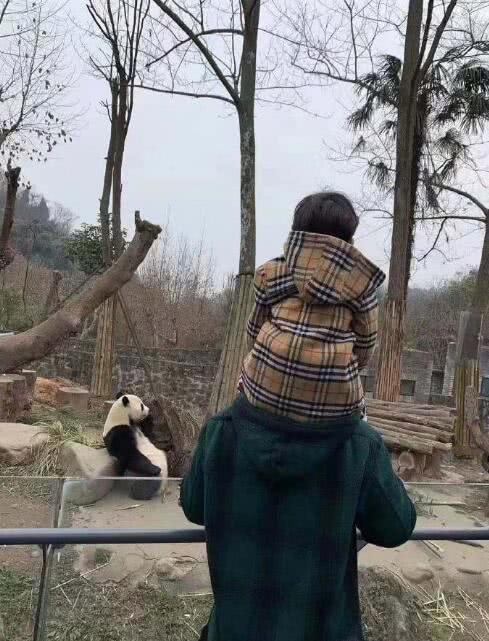 Mừng sinh nhật quý tử 3 tuổi, Angela Baby - Huỳnh Hiểu Minh không đả động đến nhau, thân ai người nấy chúc mừng - ảnh 2