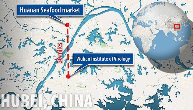 Virus Vũ Hán bị nghi là sản phẩm của phòng thí nghiệm, có liên quan đến chương trình chiến tranh sinh học của Trung Quốc - ảnh 1