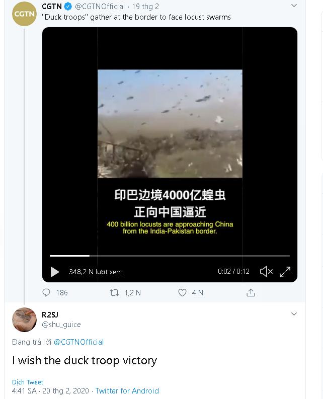 """Trung Quốc cử """"đội quân"""" 10 vạn con vịt đến biên giới để tiêu diệt 400 tỷ con châu chấu - ảnh 2"""