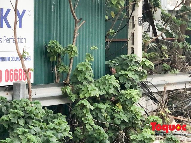 Kim tiêm nguyên máu tươi bủa vây cổng bệnh viện Bạch Mai - ảnh 3