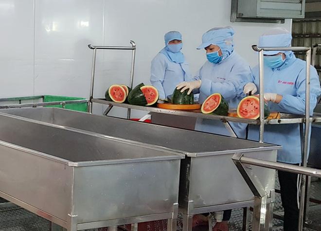 Dịch Covid-19: Xuất hiện bún dưa hấu siêu lạ, vừa ra lò đã xuất khẩu sang Hàn Quốc - ảnh 2