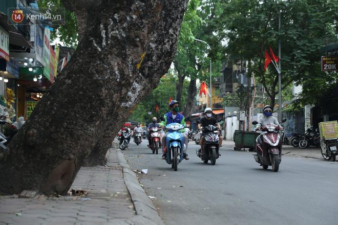 Ảnh: Cận cảnh hàng loạt cây xanh mục gốc, ngả hướng ra giữa đường ở Hà Nội - Ảnh 3.