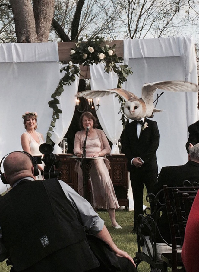 Những màn cướp spotlight đỉnh cao được thực hiện bởi hội anh em động vật nghịch hơn quỷ sứ - Ảnh 19.